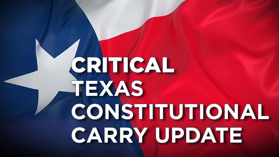 Critical Texas Constitutional Carry Update, Texas Flag