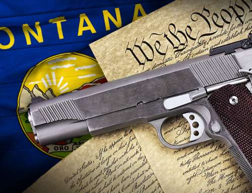 Second Amendment Sanctuary State Update: 15 And Counting